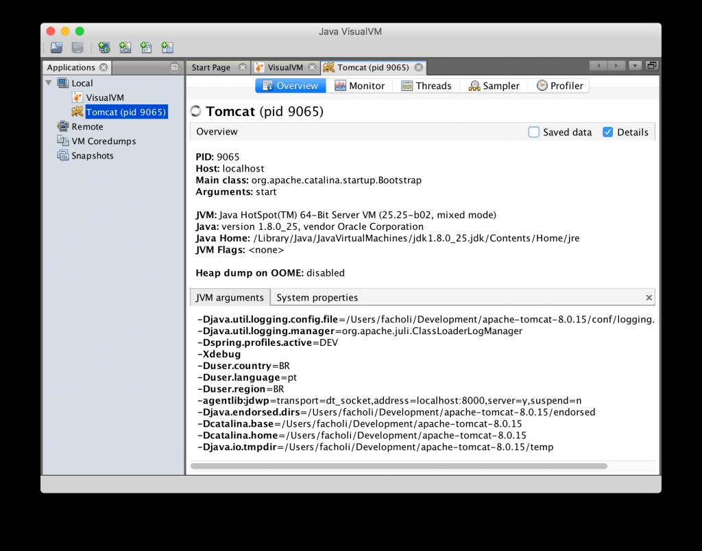 VisualVM - Detecção das VM's locais